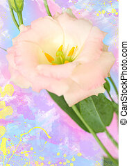 lisianthus flower. Watercolor effect - Close-up of...