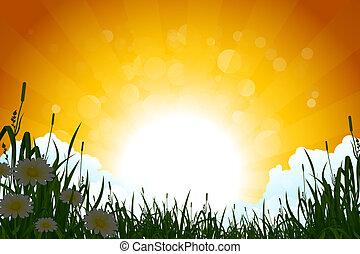 Amazing Sunrise Landscape with Grass
