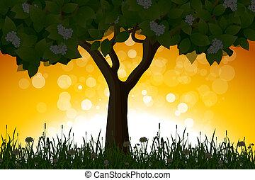 Amazing Sunrise Landscape with Tree
