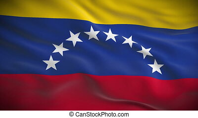 Highly detailed flag of Venezuela ripples in the wind Looped...