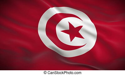 Highly detailed flag of Tunisia ripples in the wind Looped...