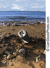 industrial waste 4 - the waste that washes up on our...