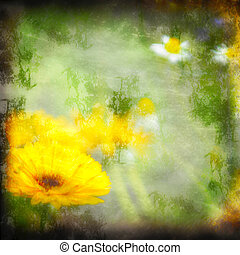 textured grunge background daisy