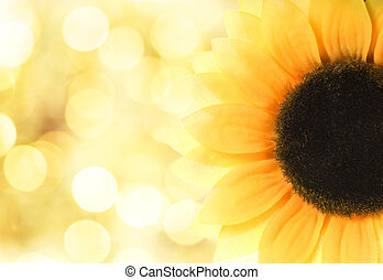 Sunflower over abstract background