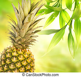 Pineapple over abstract blurred background