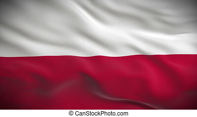 Highly detailed flag of Poland ripples in the wind. Looped...