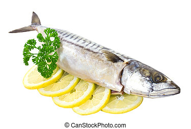 Salted mackerel with lemon on a white background