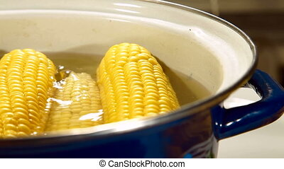 DOLLY: Corn Cob Boiling in a Pot