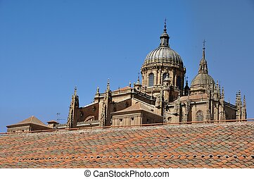 Cathedral of Salamanca and Las Dueñas Convent - New...