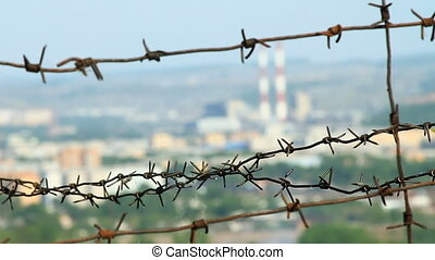 Barbed wire. - Barbed wire on the blue sky background.