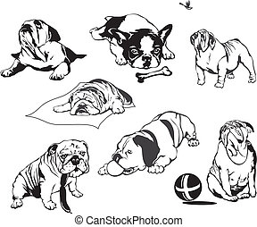 Bulldogs Set of black and white vector illustrations