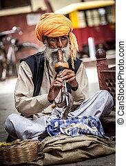 snake charmer - Photo street snake charmer. India.