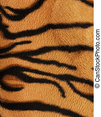 Structure of a skin of a tiger, striped background