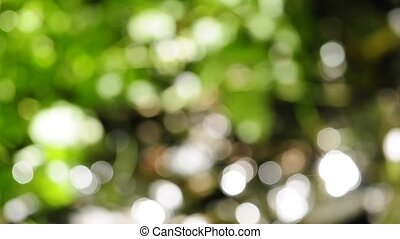 natural background - blurrred background of sun reflections...