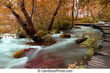 Plitvice - Part of the trail for a walk in the Plitvice...