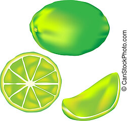 Lime fruit illustration - Vector illustration of a lime. Set...