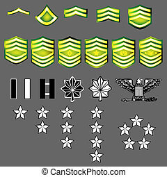 US Army rank insignia for officers and enlisted in vector...