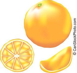 Orange fruit vector - Delicious orange fruit vector...