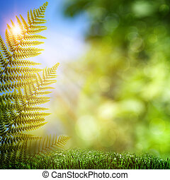 Fern. Abstract natural backgrounds with beauty bokeh
