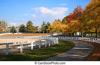 Kentucky Horse Farm - Horse Farm with White Fences in Fall...