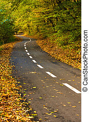 Forest path for cyclists in autumn - Newly built road in...