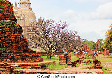 Temple in Ayutthaya, Thailand.
