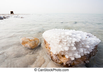 Salt in the Dead Sea - Crystalic salt on a rock near beach...
