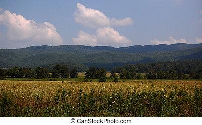 Smoky Mountains Cades cove valley - Smoky Mountains Cades...