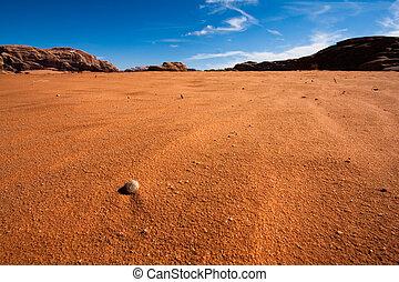 Rock in Wadi Rum