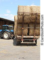 Bails of hay