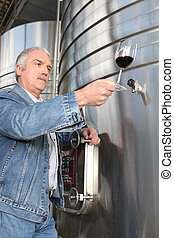 Man checking a glass of wine