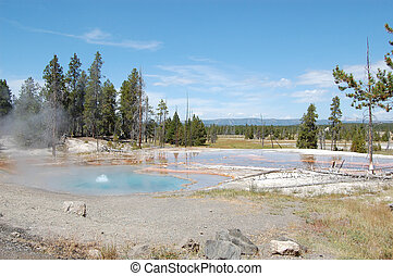 Yellowstone firehole spring