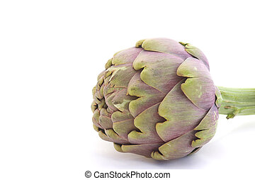 Artichoke - Close-up of lying artichoke isolated over white