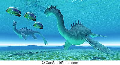 Sea Dragon Fight - Two Sea Dragon fight over territory while...