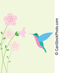 Hummingbird background