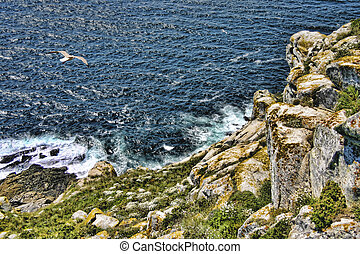 Cliff on Cies Islands - Cies Islands belong to the natural...