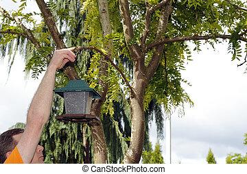 Hanging up a Bird Feeder