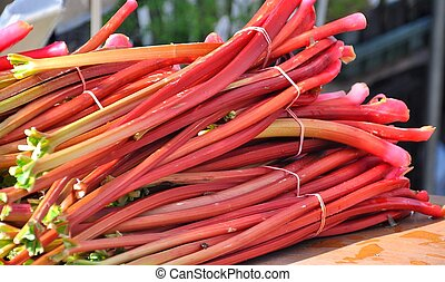 Bundles of rhubarb - Market