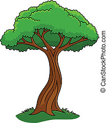Illustration of tree isolated on wh