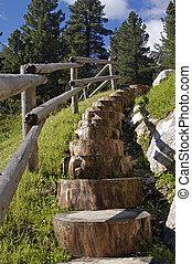 wooden stairs on italian alps