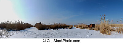 reedy lake panorama - frozen lake with reeds all round view...