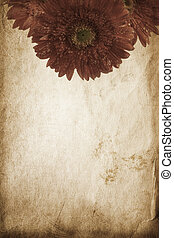 vintage flowers - special toned great for your design and...