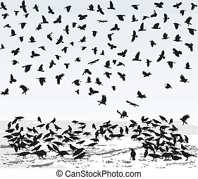 Crows in Winter - illustration of the crows on the snowy...