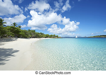 Paradise Caribbean Beach Virgin Isl - Shallow waters lap the...