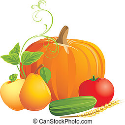 Vegetables and fruits isolated on the white. Vector...