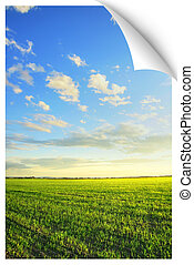 Sunrise over the field poster - Poster or postcard illusion...
