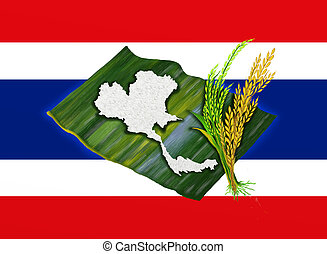 Jasmine Rice With Thailand Flag - Ripe Rice, Green Rice and...