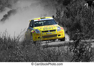 suzuki world rally car racing on the Portugal Rally 2007