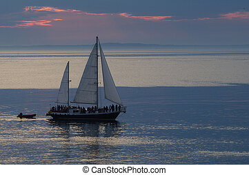 Whale watching tour - A whale watching tour sail boat...