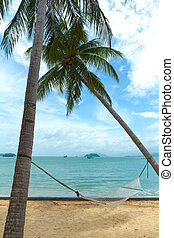 view of nice hammock hanging between two palms